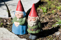 A cute couple of garden gnomes